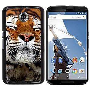 [Neutron-Star] Snap-on Series Teléfono Carcasa Funda Case Caso para NEXUS 6 / X / Moto X Pro [Feliz piel del tigre animal anaranjada linda]