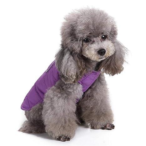 iBàste Chaleco sin Mangas para Mascotas Perro Chaqueta cálida Cortavientos Abrigo para Perros pequeños medianos Chaleco