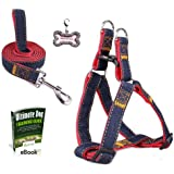 Olivery No-Pull Dog Leash Harness Set, Adjustable Heavy Duty Denim Easy Step in Collar Set for Pet Training & Everyday Walking