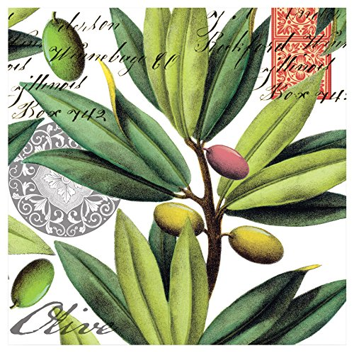 Michel Design Works 20-Count 3-Ply Paper Cocktail Napkins, Olive Grove (Plate Dinner Green Olive)