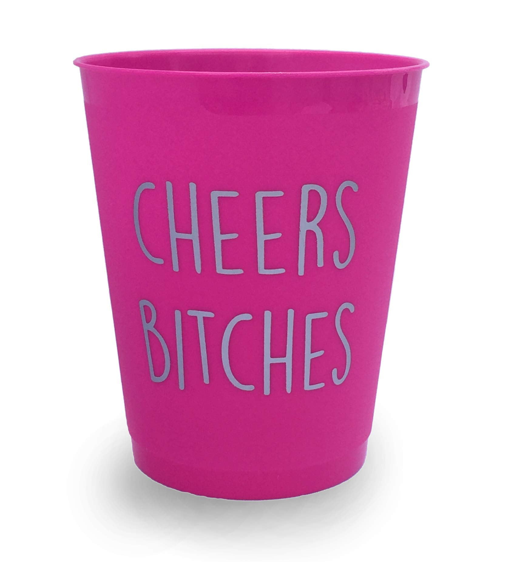 Cheers B*tches Party Drinking Cups - Bachelorette/Night Out/Celebration -Pack of 10 Hot Pink & Silver