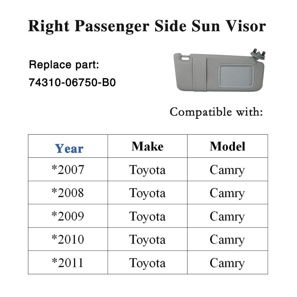 LZVTO Organizer,Sun Visor Elastic Storage Plate,13.39 Inches X 5.52 Inches Black and Green