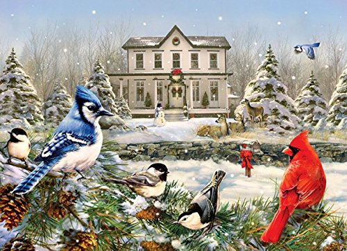 Country House Birds ()