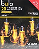 Noma The Bulb Collection, 20 Bulb Light Chain with Classic Edison Style Bulbs
