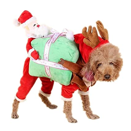 GaoCold Funny Pet Clothes Dog Coat Santa Claus Carrying Gift Box Costume Fancy Puppy Apparel (  sc 1 st  Amazon.com & Amazon.com : GaoCold Funny Pet Clothes Dog Coat Santa Claus Carrying ...