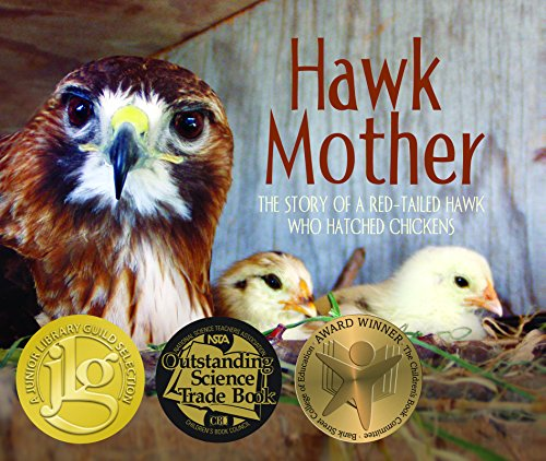 (Hawk Mother: The Story of a Red-tailed Hawk Who Hatched Chickens)
