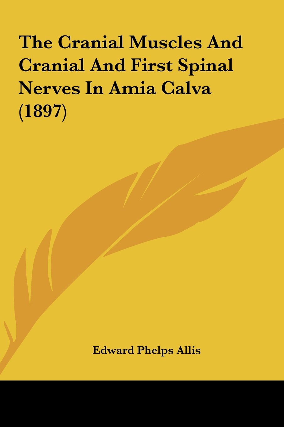 The Cranial Muscles And Cranial And First Spinal Nerves In Amia