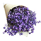 Remeehi Natural Dried Flowers Decorative Flowers Bouquet Dried Branches for Decoration 7#