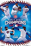 MLB: 2016 World Series Champs Poster 24 x 36in