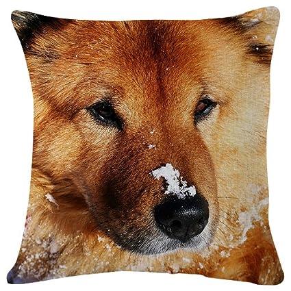 Enjoyable Amazon Com Dog Muzzle Snow Throw Pillow Case Cushion Cjindustries Chair Design For Home Cjindustriesco