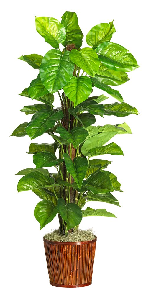 Nearly Natural 6594-05 Large Leaf Philodendron Decorative Silk Plant, 63-Inch, Green