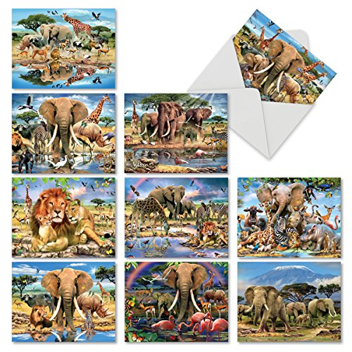 M6640TYG Savanna Selfies: 10 Assorted Thank You Note Cards Featuring Various Majestic Animals of the African Continent Dwelling Together in Peace, w/White Envelopes.