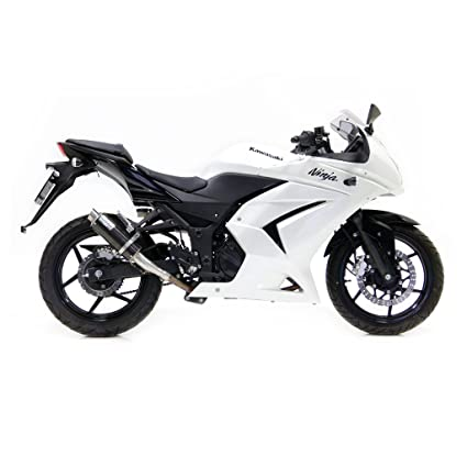 Escape LeoVince GP Corsa Racing Slip-on Carbono Ninja 250 R ...