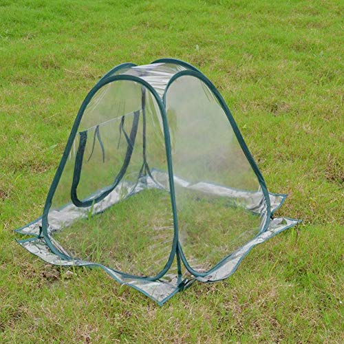 Portable Pop-up Greenhouse Tent,Transparent PVC Plant Cover Tent Foldable Mini Protected Plant House Waterproof Backyard Garden Tent for Grow Seeds Seedlings(70x70x80CM)