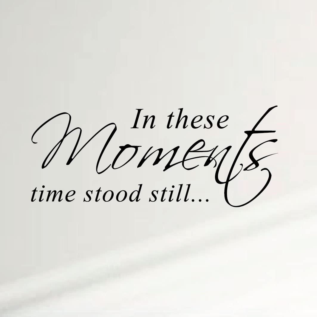 Innovative Stencils in These Moments Time Stood Still Home Wall Decal Sticker Family Quote Art #1292 (28