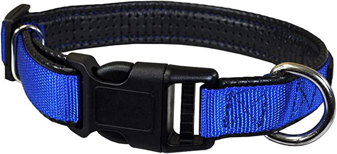Downtown Pet Supply Plastic Quick Release Dog and Puppy Collar (Blue, Large)