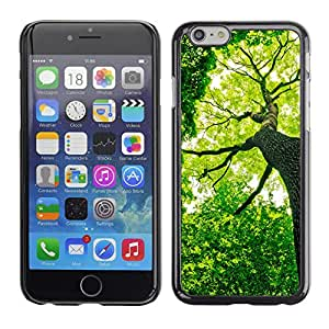 LECELL--Funda protectora / Cubierta / Piel For iPhone 6 -- Verde Forrest Árbol --