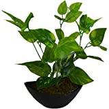 Thefancymart artificial Green Leaves plant with Boat shape PVC black Pot
