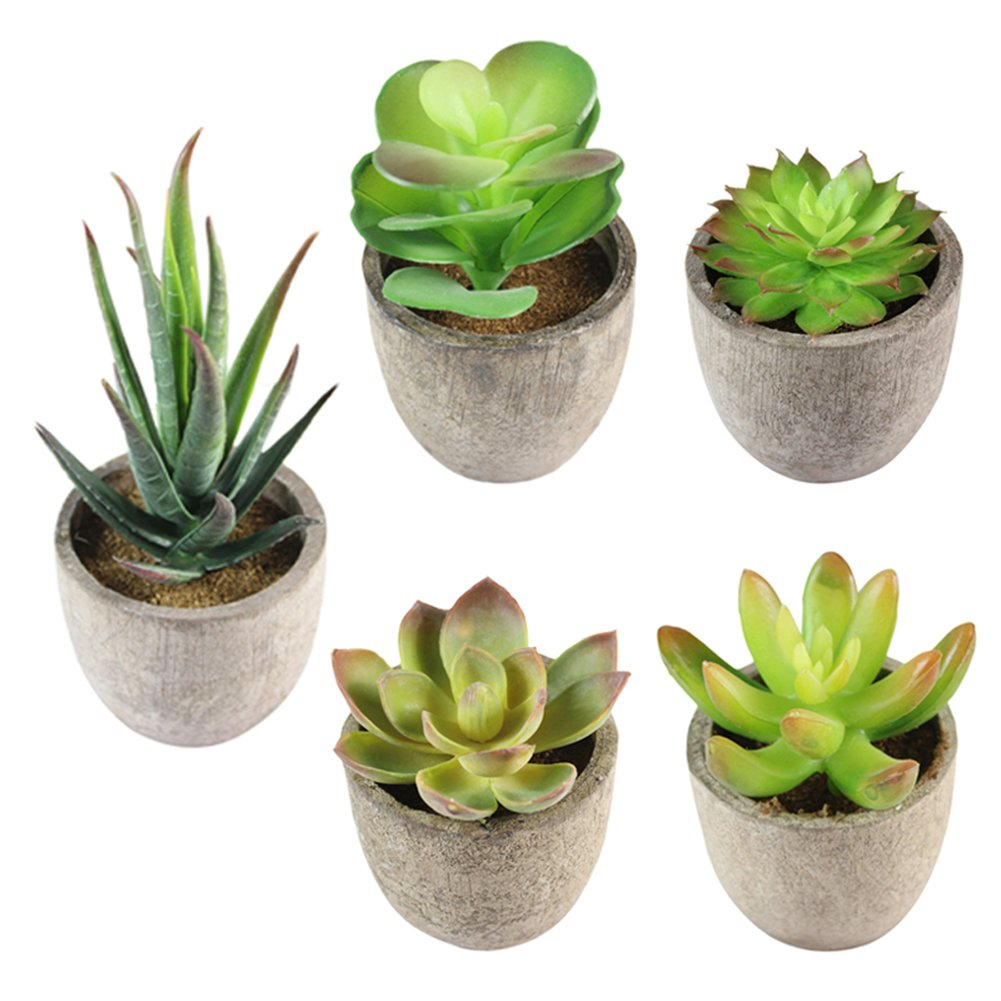 Artificial Succulents Plants Simulation Bonsai Mini Potted Assorted Artificial Potted Faux Succulents Plants with Pots for Home Garden Decor heresell