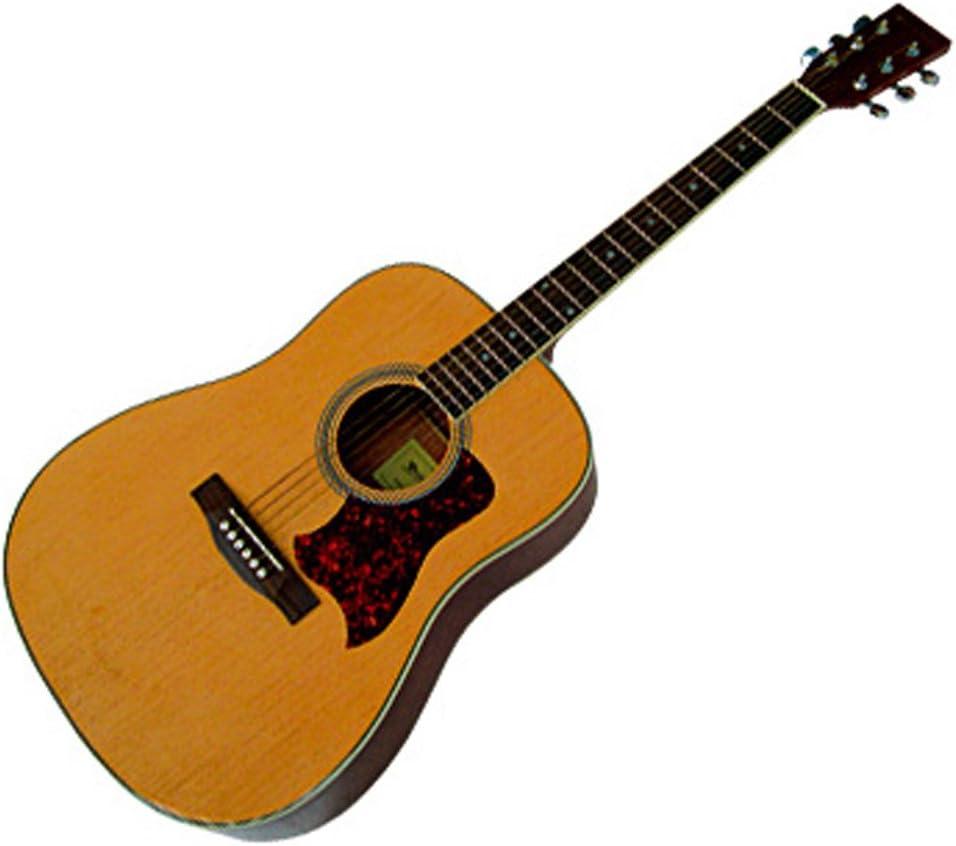 Westwood F-650 - Guitarra clásica (tamaño 4/4)