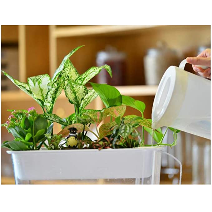 Amazon.com : Aquarium Fish Tank Landscape Circulation Aquarium Water Garden Hydroponics Growing System with Organic Sprouts and Herbs Aquarium Starter Kit ...