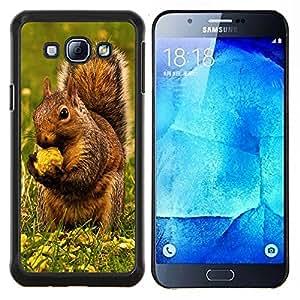 TECHCASE---Cubierta de la caja de protección para la piel dura ** Samsung Galaxy A8 ( A8000 ) ** --Ardilla de Brown & Nut