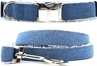 product image for Diva-Dog 'Blue Jean Baby' Custom Engraved Dog Collar, Matching Leash Available