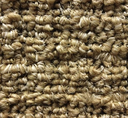 Boucle Weave (10'x12' Straw Weave Casual Boucle Level Loop 20 oz Olefin Indoor-Outdoor Area Rug Carpet)
