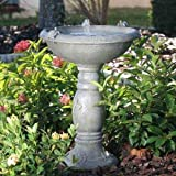 Smart Solar 20622R01 Country Gardens Solar Birdbath Fountain, Gray Weathered Stone Finish
