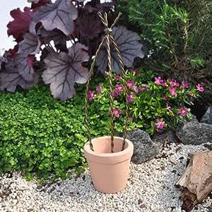 Pot with Wire Trellis for Miniature Garden, Fairy Garden