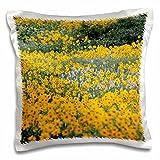 Danita Delimont - Flowers - Wildflowers, Willard Basin near Mantua, Utah, USA - US45 HGA0382 - Howie Garber - 16x16 inch Pillow Case (pc_147283_1)