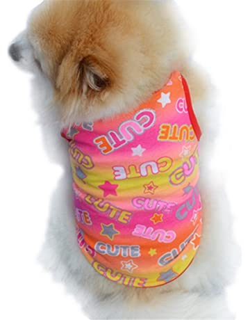 adc7e3443 Amazon.com  Costumes - Apparel   Accessories  Pet Supplies