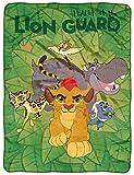 "Disney's The Lion Guard, ""Crew"" Micro Raschel Throw"