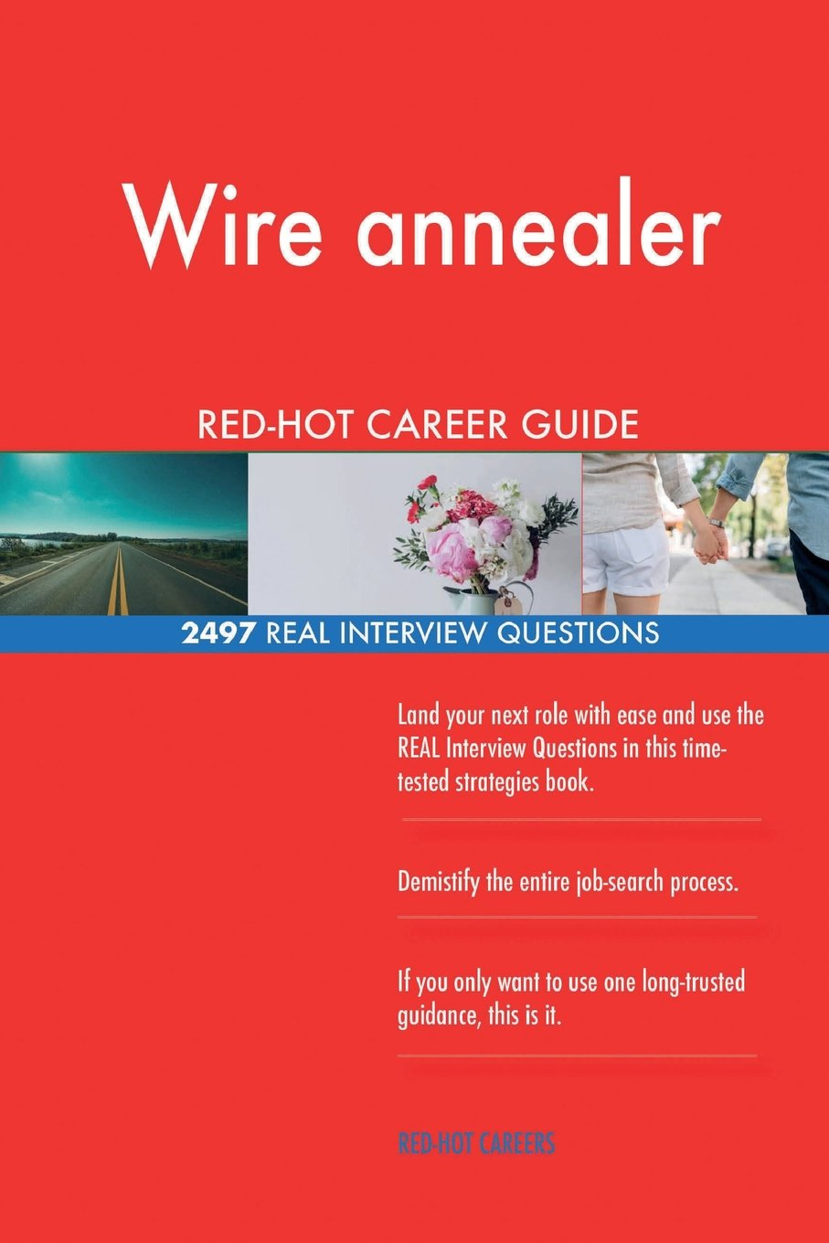 Read Online Wire annealer RED-HOT Career Guide; 2497 REAL Interview Questions ebook