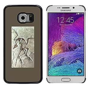 TopCaseStore / la caja del caucho duro de la cubierta de protección de la piel - Biology Paleontology Fossil - Samsung Galaxy S6 EDGE SM-G925