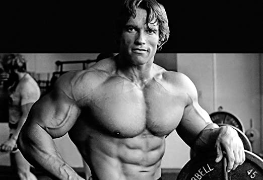Arnold Schwarzenegger Inspiration Bodybuilding Poster 36 Inch X 24 Inch 20 Inch X 13 Inch