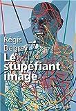 Le stupéfiant image: De la grotte Chauvet au Centre Pompidou