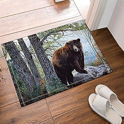 NYMB Brown Bear on the Stone in the Forest Bath Rugs, Non-Slip Floor Entryways Outdoor Indoor Front Door Mat,15.7x23.6in Bath Mat Bathroom Rugs