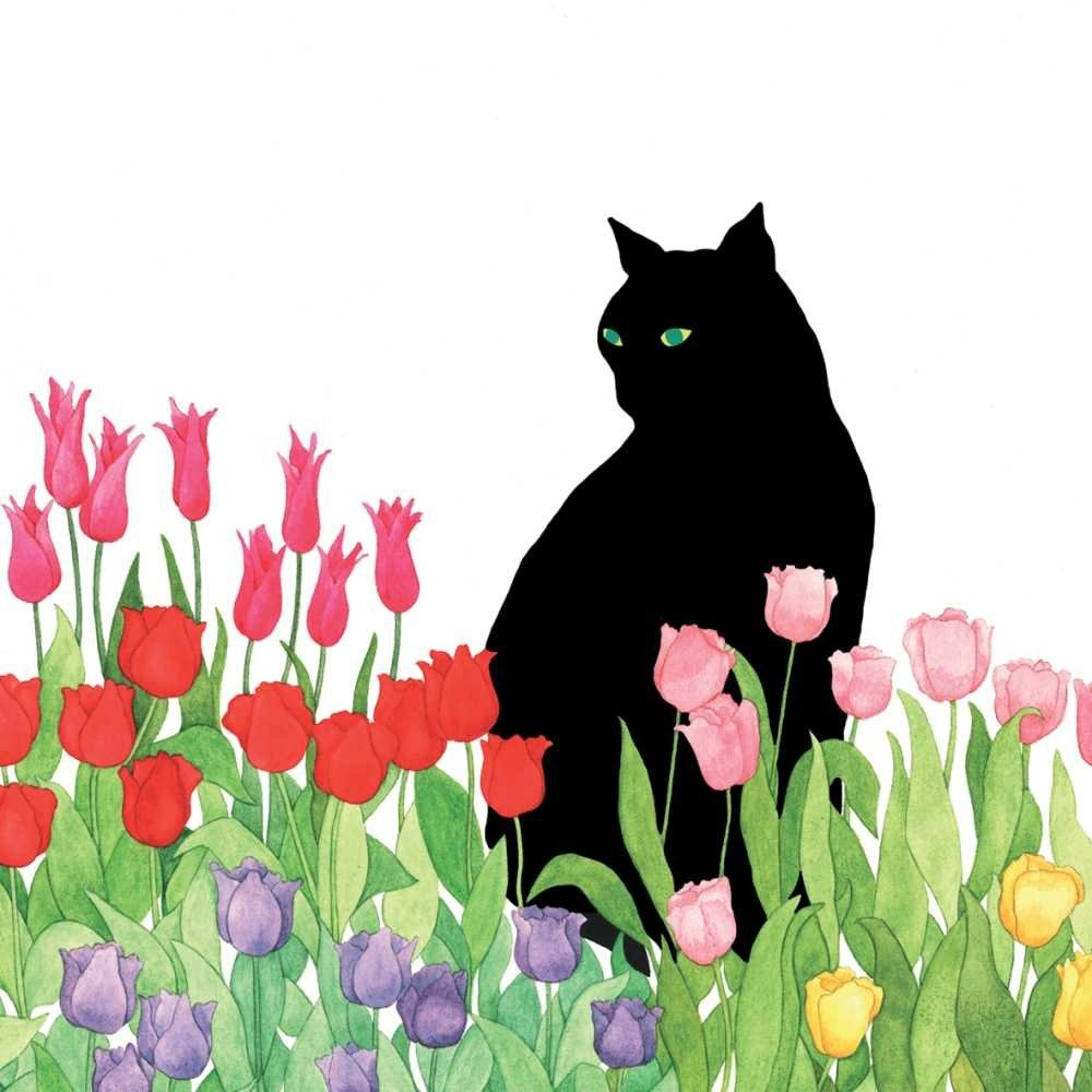 Paperproducts Design PPD 1332398 Black Cat Tulips Lunch Paper Napkins, 6.5'' x 6.5'', Multicolor