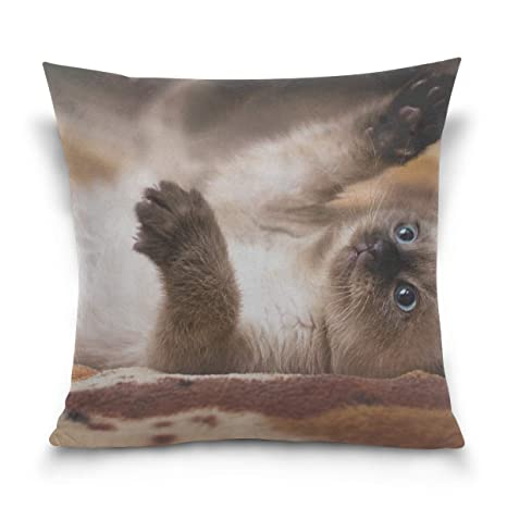 Hectwya Funda de Almohada Kitten Cat Playful Down Paw Sofa ...
