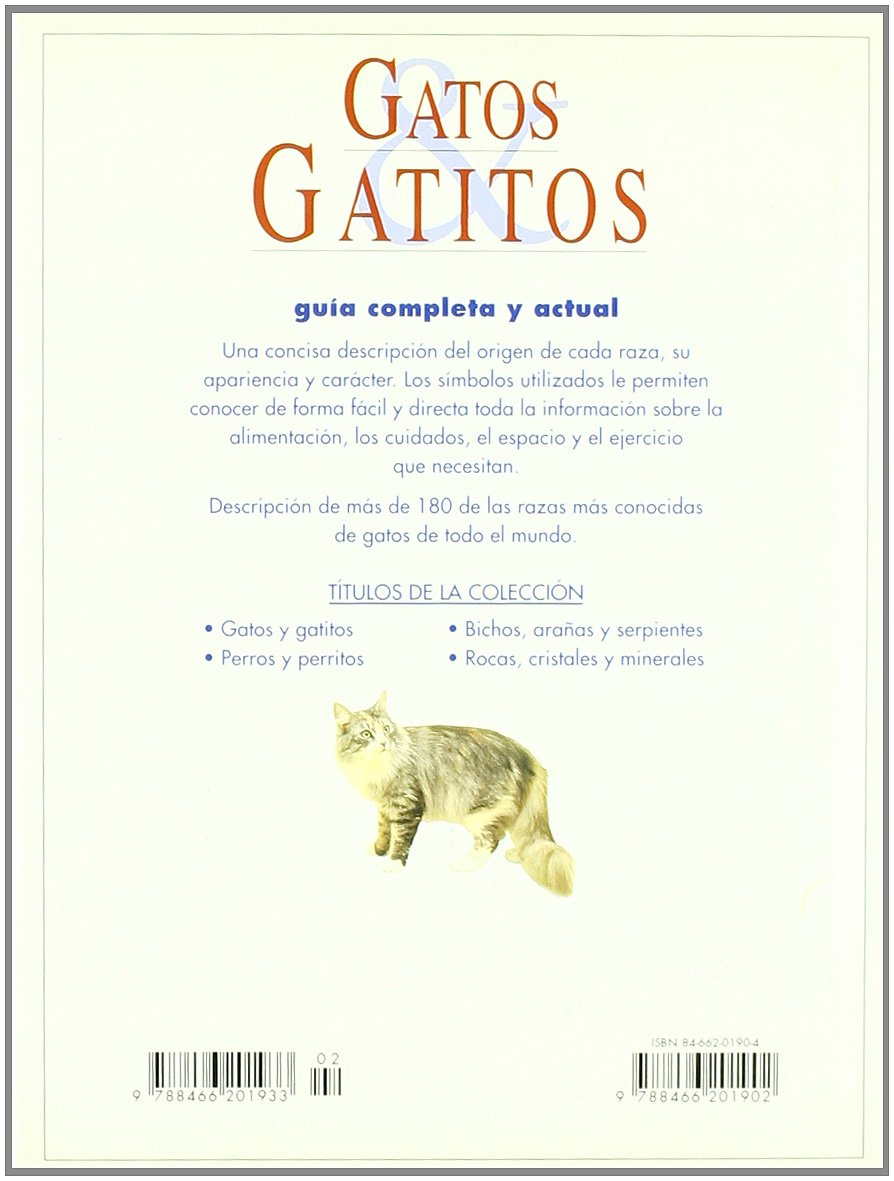 Gatos y gatitos / Cats and Kittens (Spanish Edition): Lydia Darbyshire: 9788466201902: Amazon.com: Books