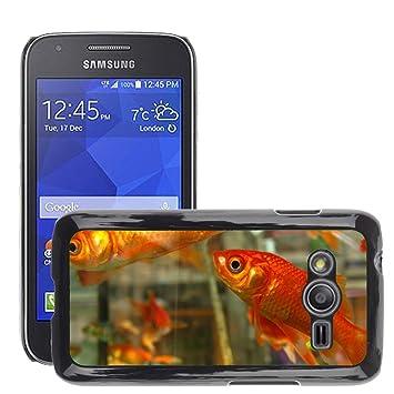 Cas Coq Case Cover // M00105428 Goldfish pescado Pecera Agua de Orange // Samsung Galaxy Ace4 / Galaxy Ace 4 LTE / SM-G313F: Amazon.es: Electrónica