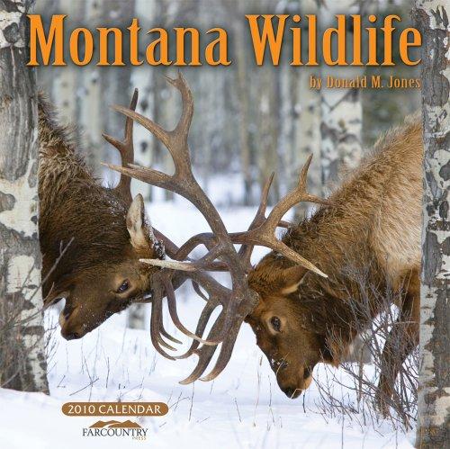 Montana Wildlife 2010 Wall Calendar