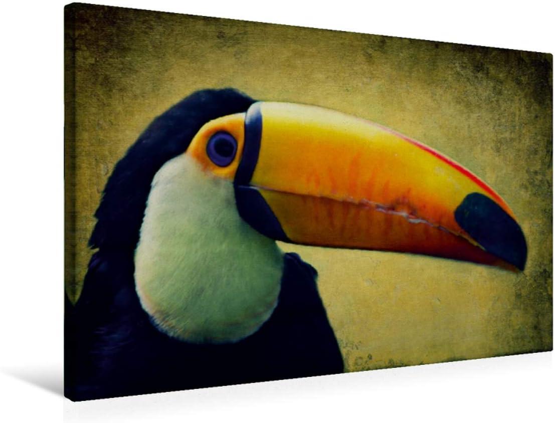 Premium - Lienzo de lienzo (75 x 50 cm, horizontal, imagen sobre bastidor, lienzo auténtico, impresión sobre lienzo: pintura digital y composing en estilo vintage (CALVENDO animal);CALVENDO Animales