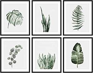 Bestbuddy Pet Set of 6 (8X10) Unframed Botanical Prints Wall Art Eucalyptus Tropical Leaves Watercolor Art Print Set Home Wall Decor BBPAP008d