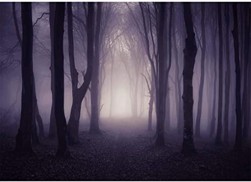 Amazon Com Allenjoy 7x5ft Misty Dark Forest Woods Halloween Backdrop For Photography Gloomy Grove Mystery Vampire Background For Portrait Magic Witch Wizard Sorcerer Ghost Themed Party Banner Decors Photo Props Camera