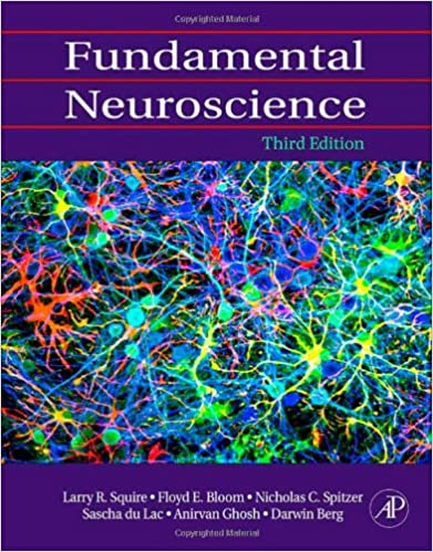 Read e book online time pdf navegar e books fundamental neuroscience third edition download pdf or read online fandeluxe Gallery
