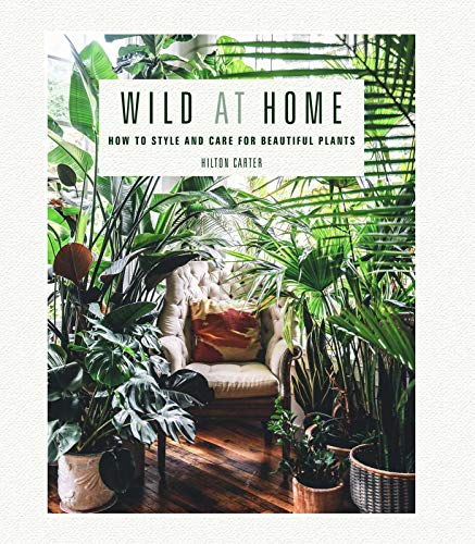 Pdf Home Wild at Home: How to style and care for beautiful plants