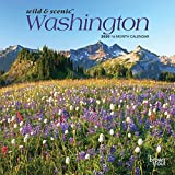 Washington Wild & Scenic 2020 7 x 7 Inch Monthly Mini Wall Calendar, USA United States of America Pacific West State Nature