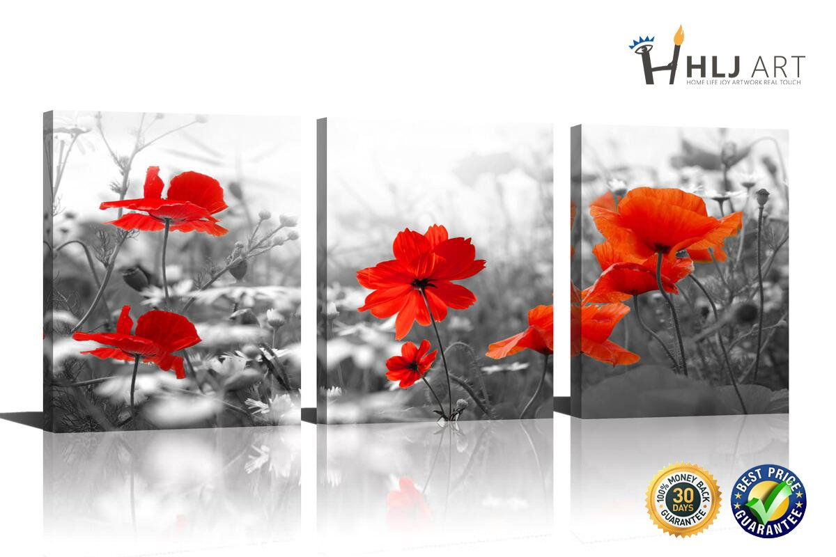 HLJ Arts Modern Blooming Poppies Red Flower Painting Still Life Canvas Grey Background Wall Art for Home Decor 12x16inchesx3pcs/se